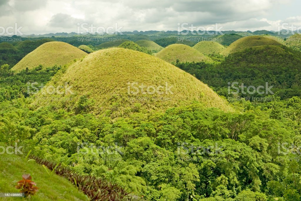 Green Chocolate Hills of Bohol royalty-free stock photo