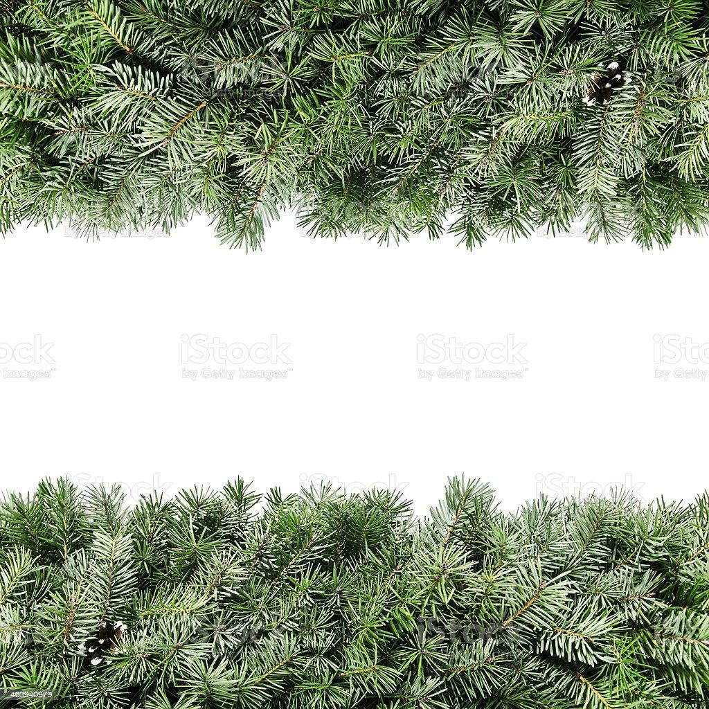 Green Christmas garland framing white background stock photo
