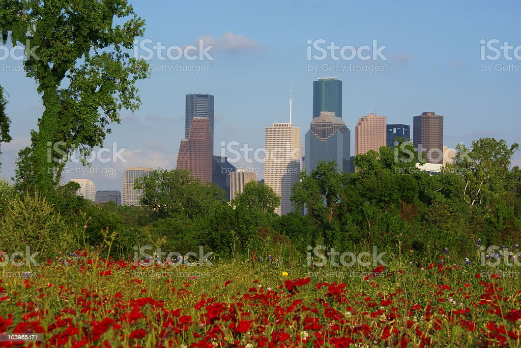 Green city Houston stock photo