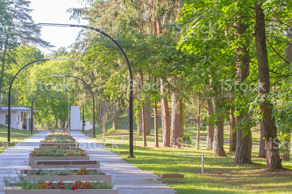Green city park in sunny summer day. Lightings, flowers, benches stock photo