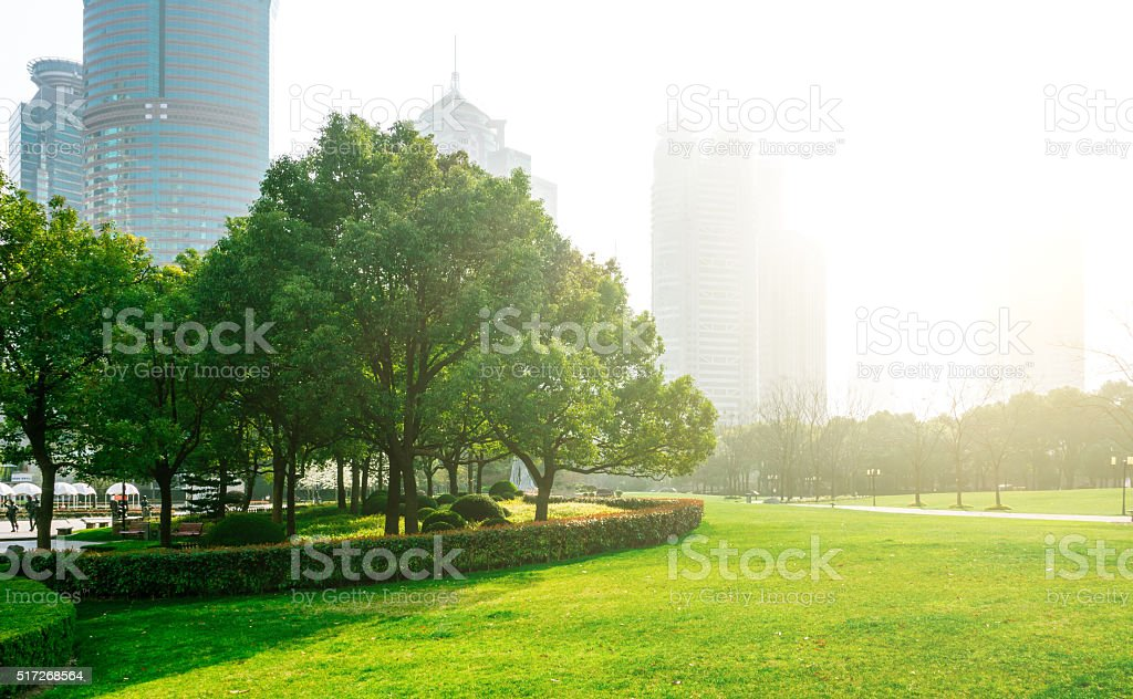 Green city park stock photo
