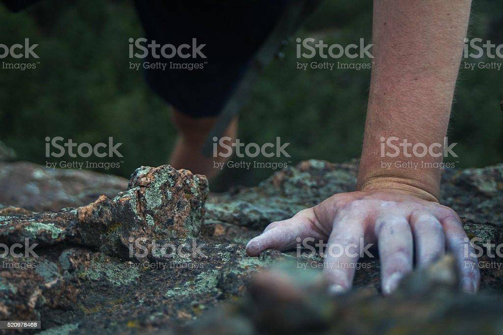 Green Climbing stock photo