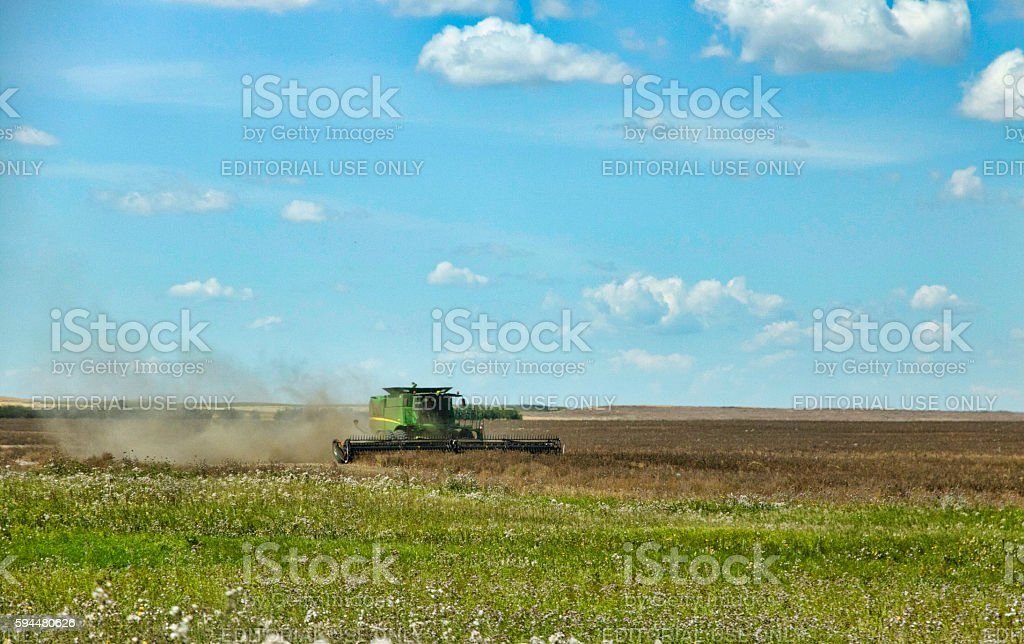 Green Combine Harvesting a Field of Lentils on the Prairies stock photo