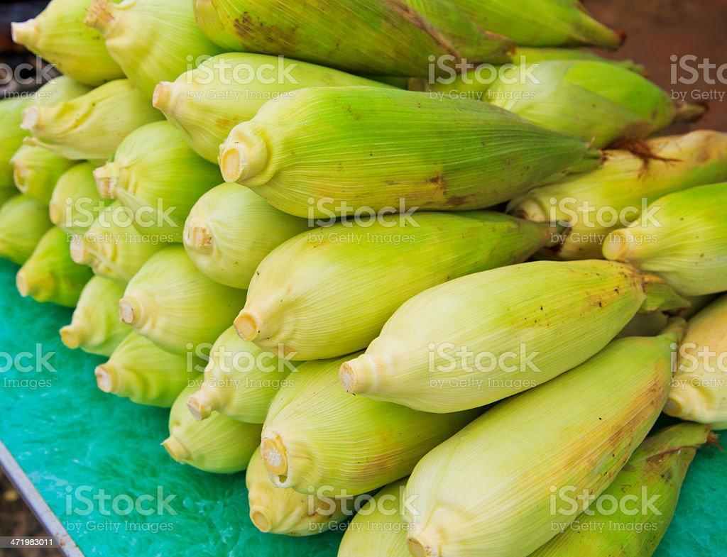 green corn royalty-free stock photo
