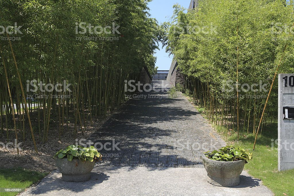 Green corridor of bamboo in the garden, chinese style royalty-free stock photo