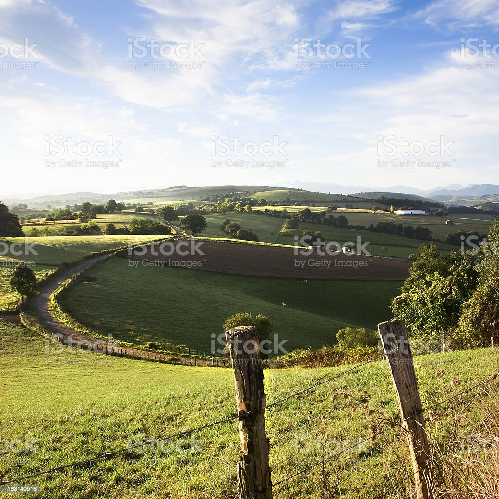 green countryside under a blue sky in summer stock photo