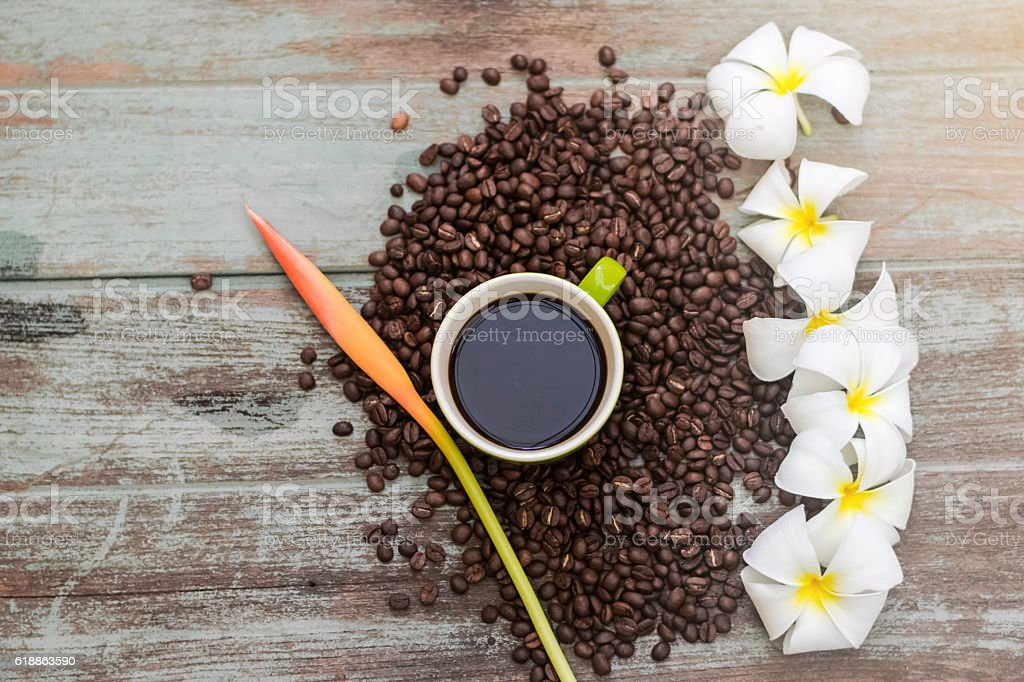 Green cup of coffee with plumeria flower stock photo