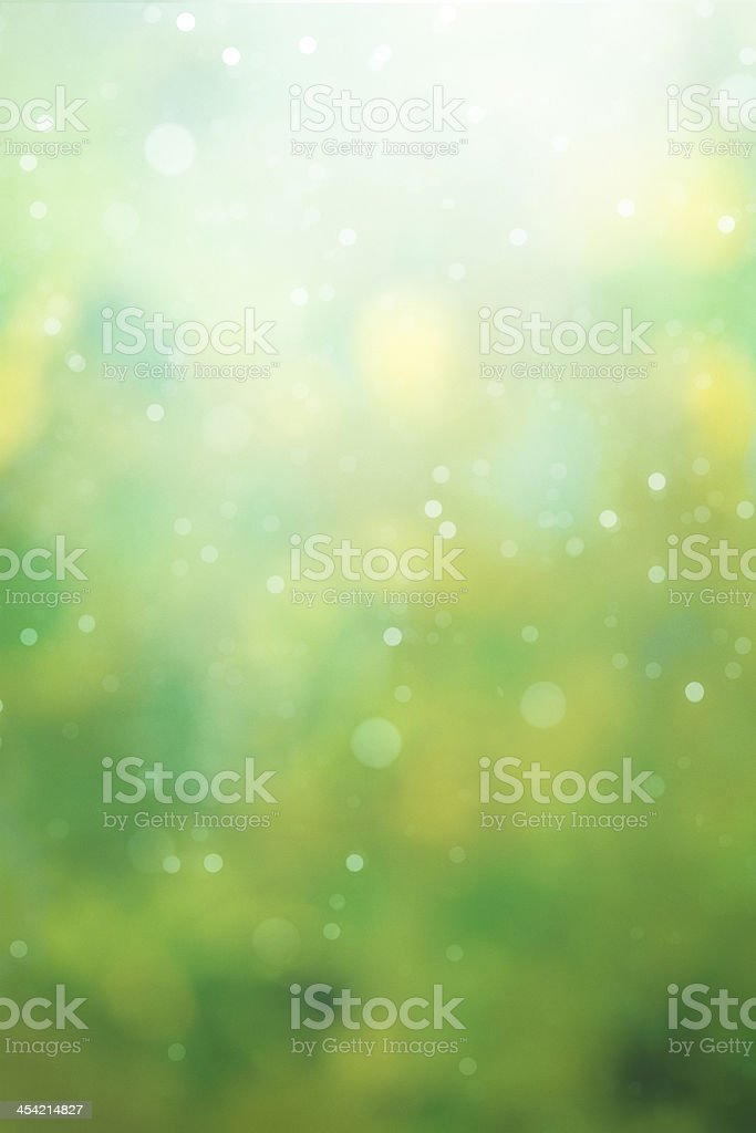 green defocused background stock photo