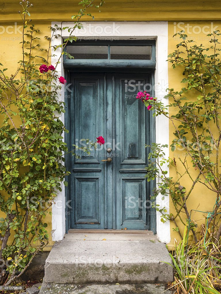 Green door and roses royalty-free stock photo