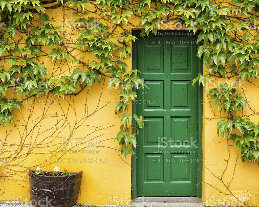 Green door and vines against bright yellow wall royalty-free stock photo