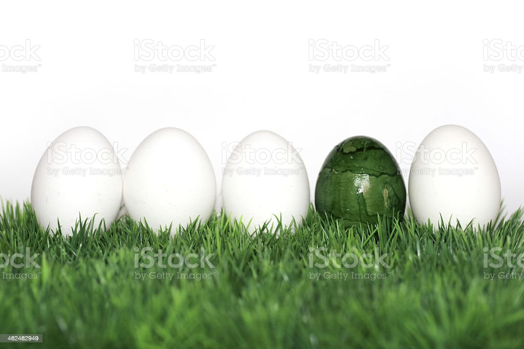 green egg between the white eggs stock photo