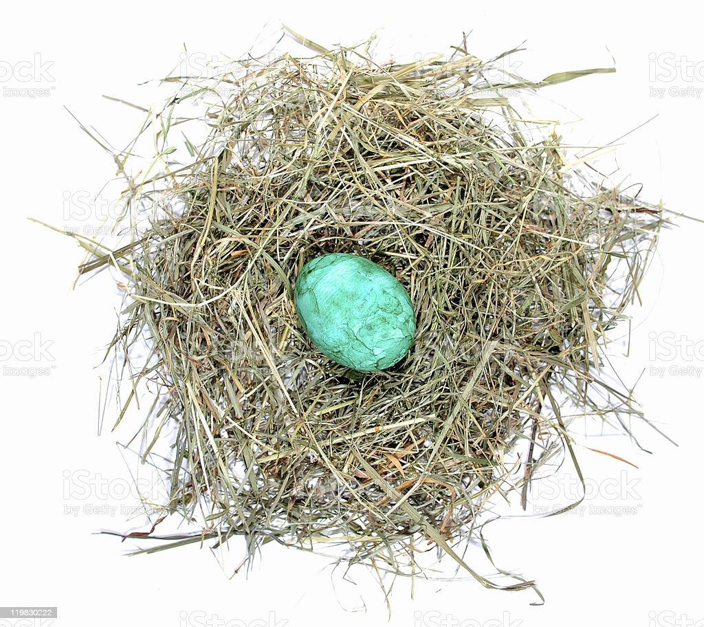 Green Egg stock photo