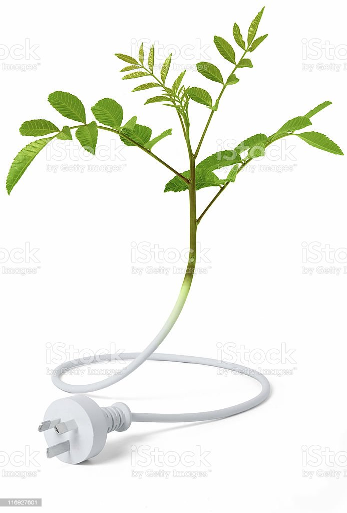 Green Energy - Australian Plug royalty-free stock photo