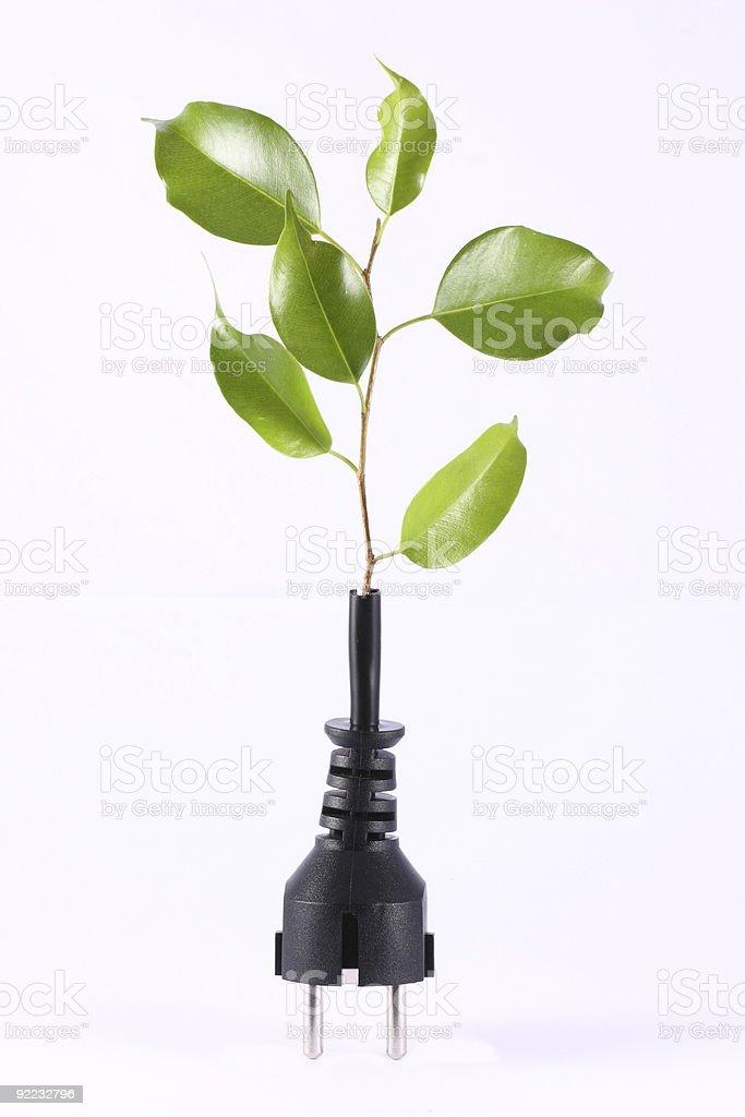 Green Energy royalty-free stock photo