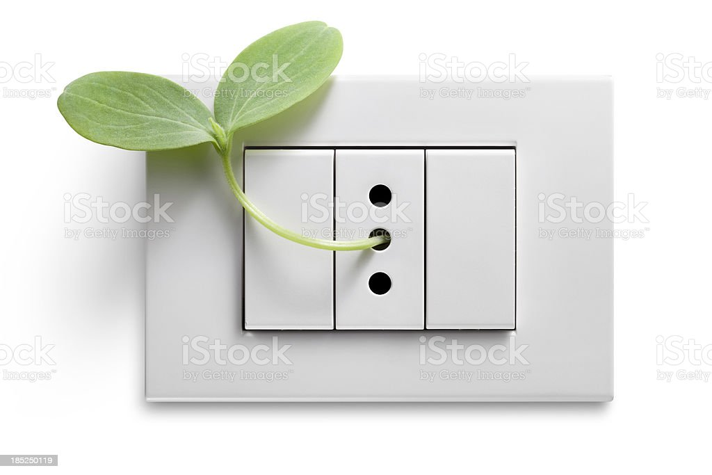 Green energy. Seedling into the electrical outlet. royalty-free stock photo