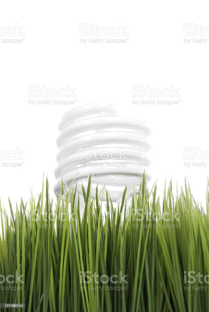 Green Energy Series royalty-free stock photo