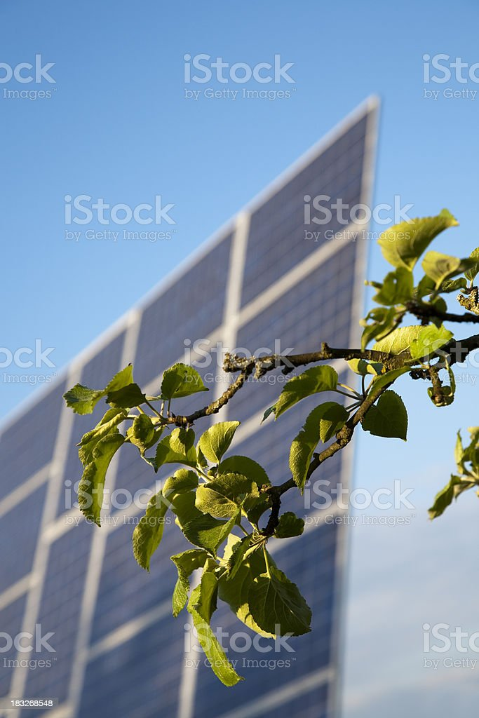 Green energy, Solar Panel and Tree Branch royalty-free stock photo