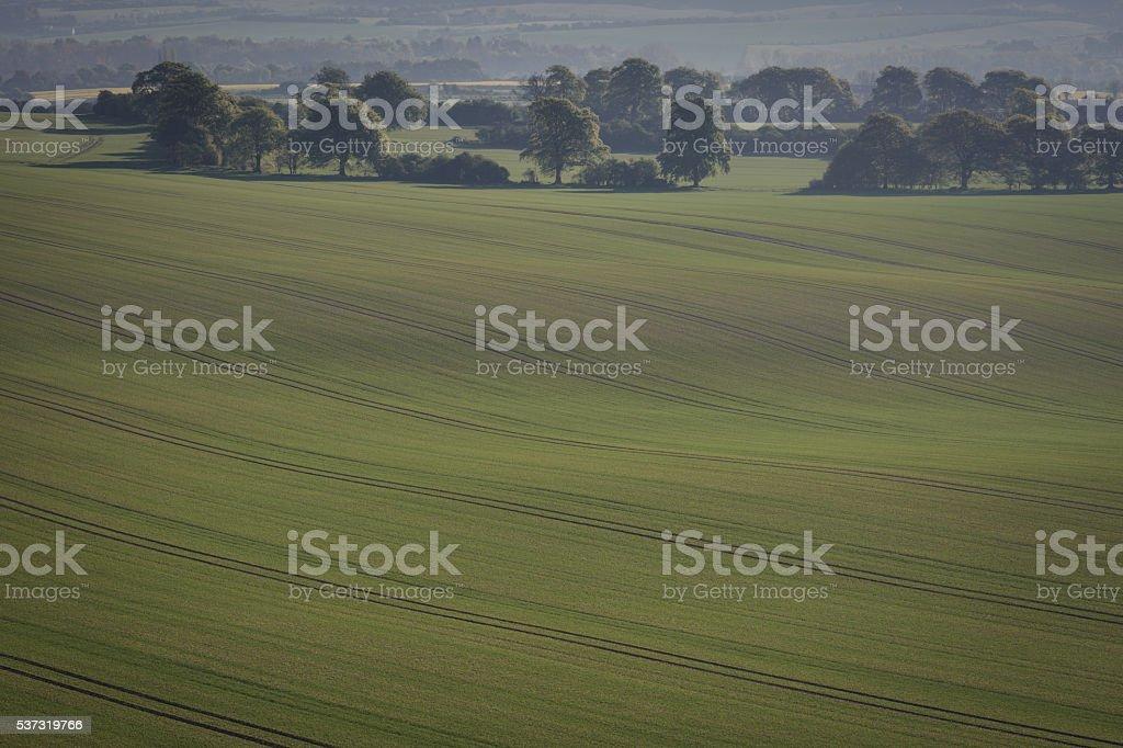 Green English Countryside stock photo