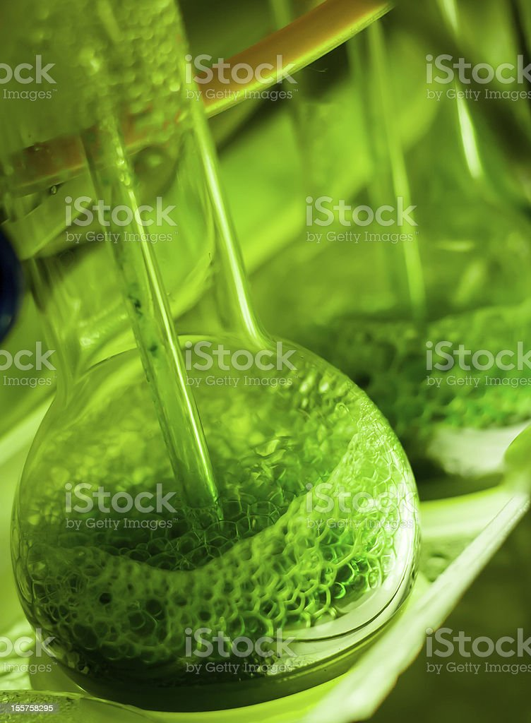 Green experiment in laboratory stock photo