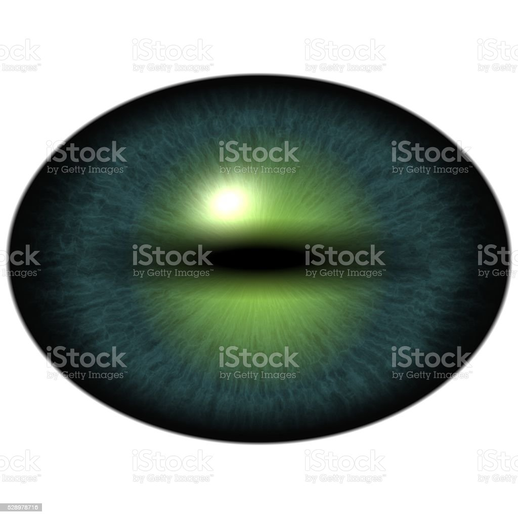 Green eye with large pupil and bright retina. Dark green stock photo