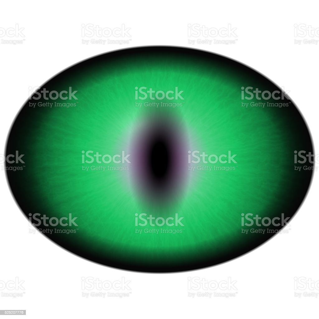 Green eye with large pupil and bright retina. Green iris stock photo