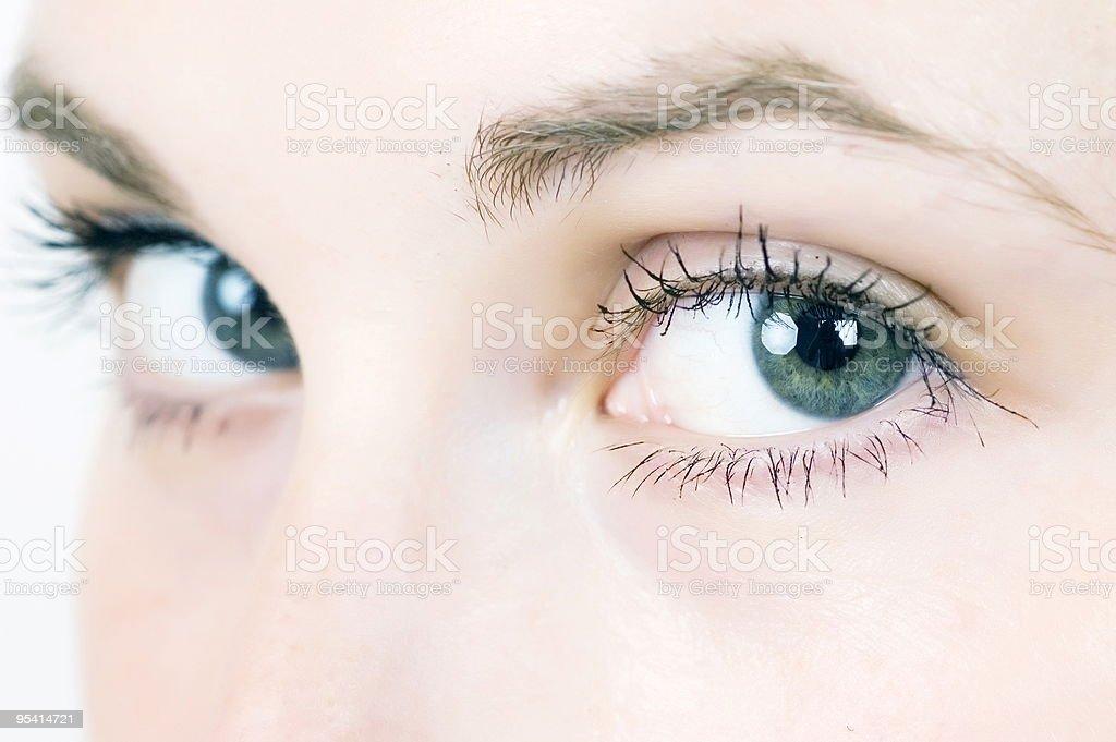 green eyes royalty-free stock photo