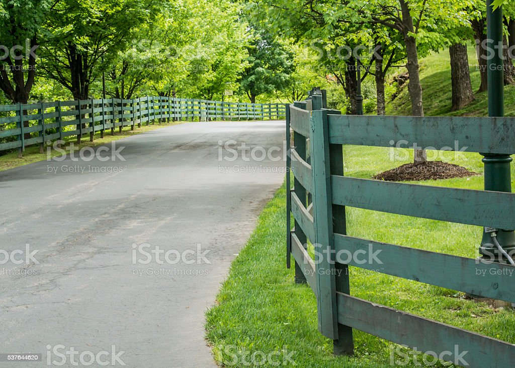 Green Fence Lining the Road stock photo