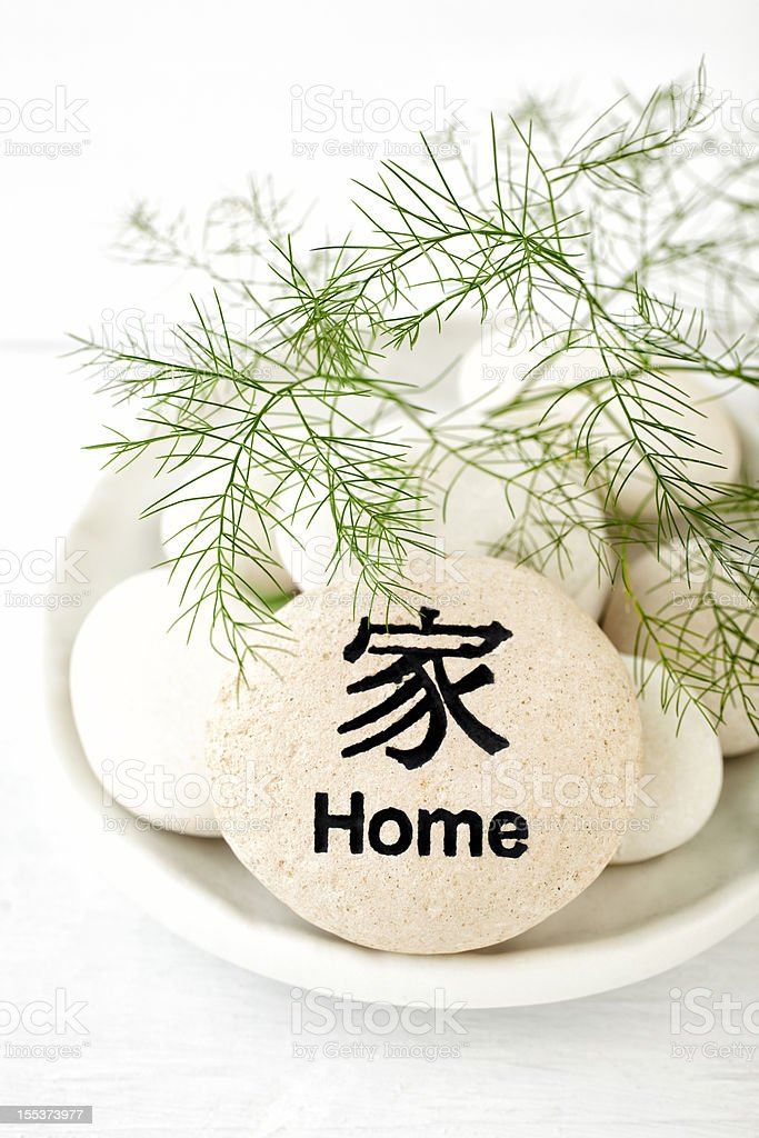 Green fern on top of rock with Home inscribed royalty-free stock photo