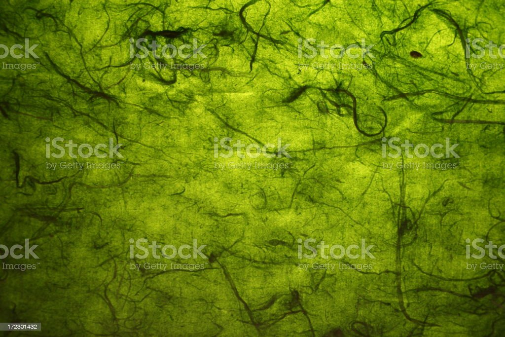 Green fibre paper background royalty-free stock photo
