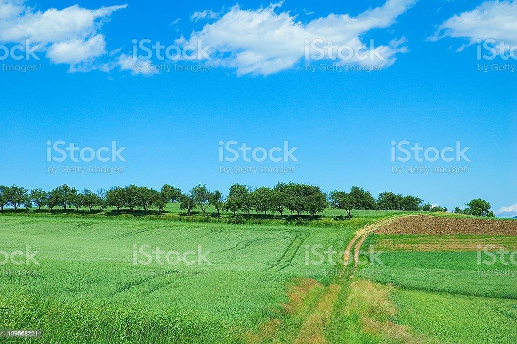green field 3 royalty-free stock photo