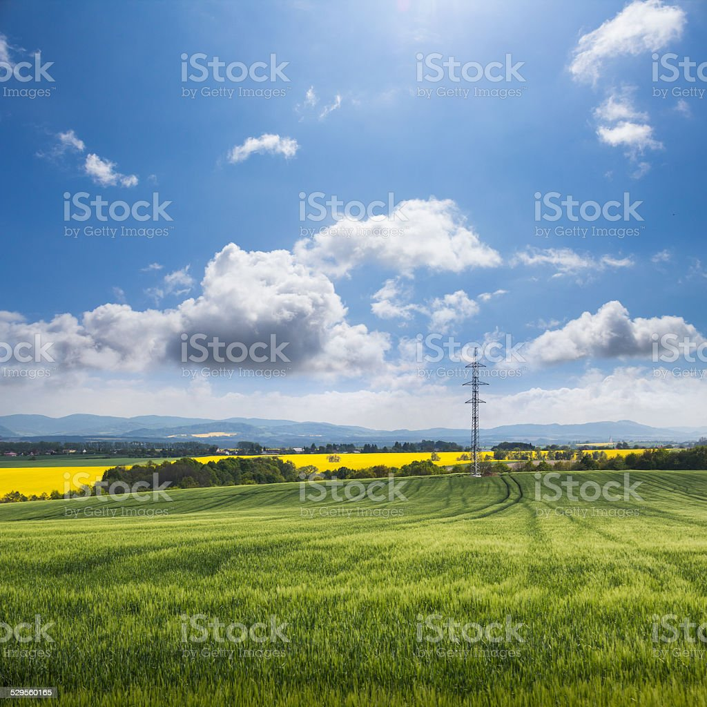 Green field and blue sky landscape stock photo