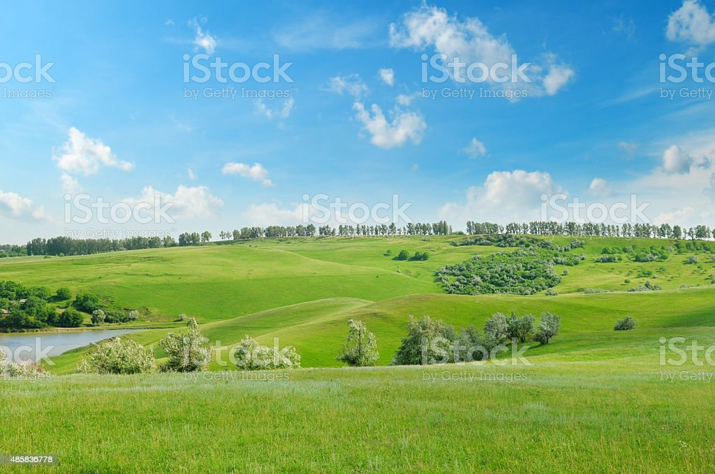 green field and blue sky stock photo