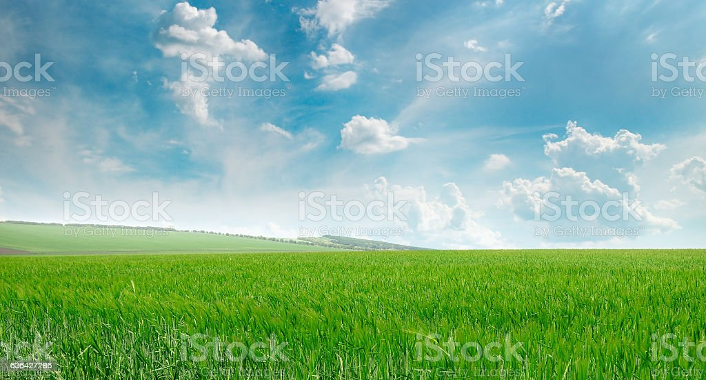 green field and blue sky with clouds stock photo