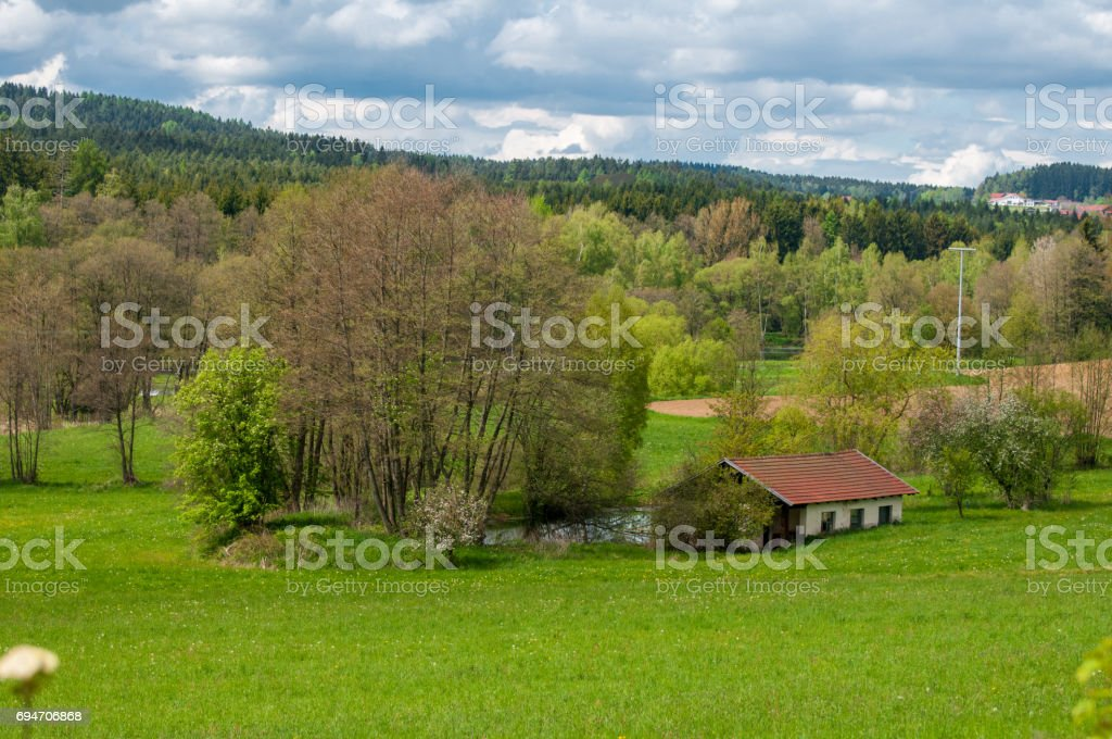 green field and blue sky with light clouds stock photo