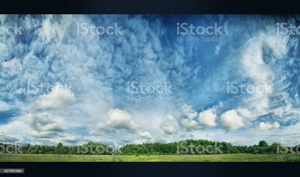 Green field and bright sun. stock photo