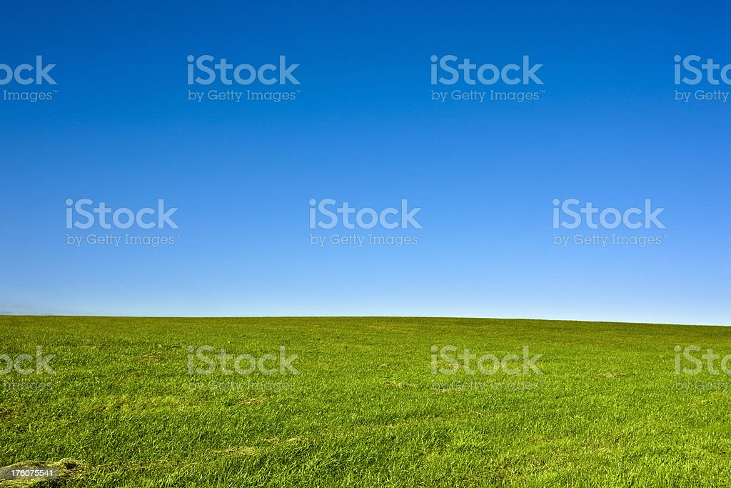Green Field and Clear Blue Sky Landscape royalty-free stock photo