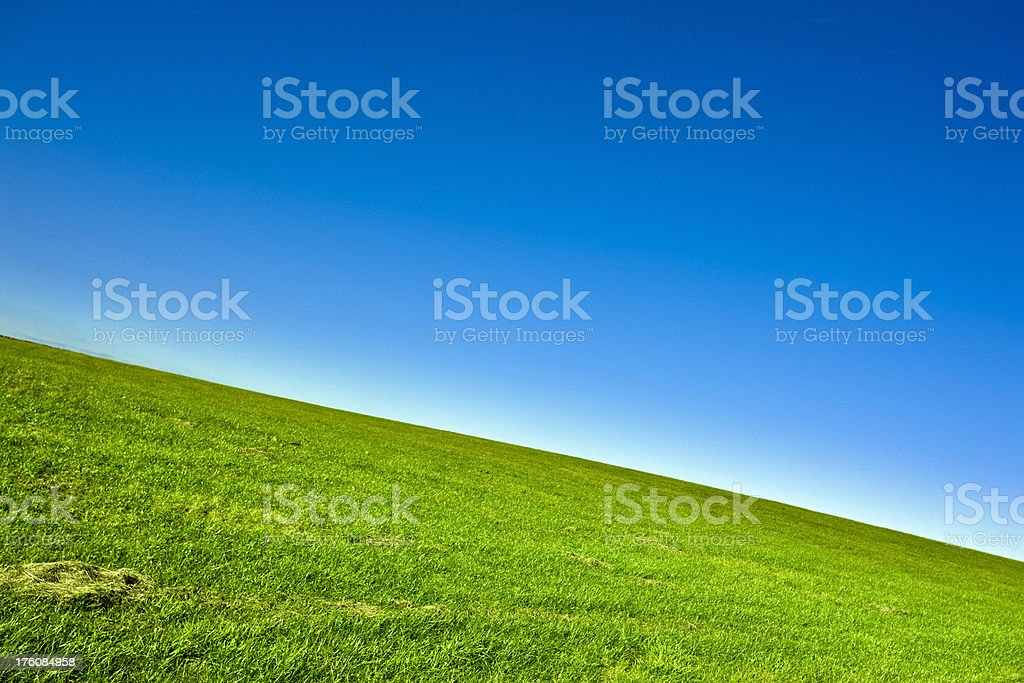 Green Field and Clear Blue Sky royalty-free stock photo