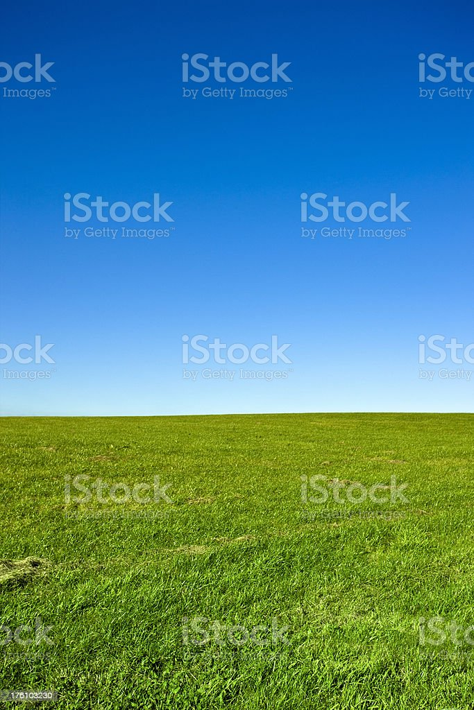 Green Field and Clear Blue Sky stock photo