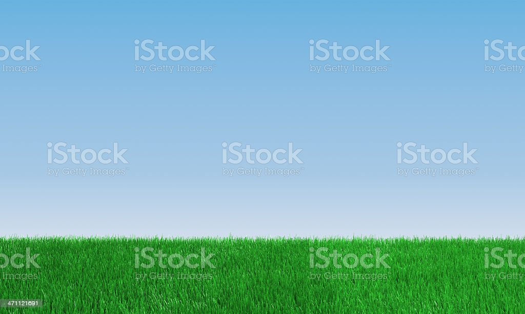 Green Field And Clear Sky royalty-free stock photo