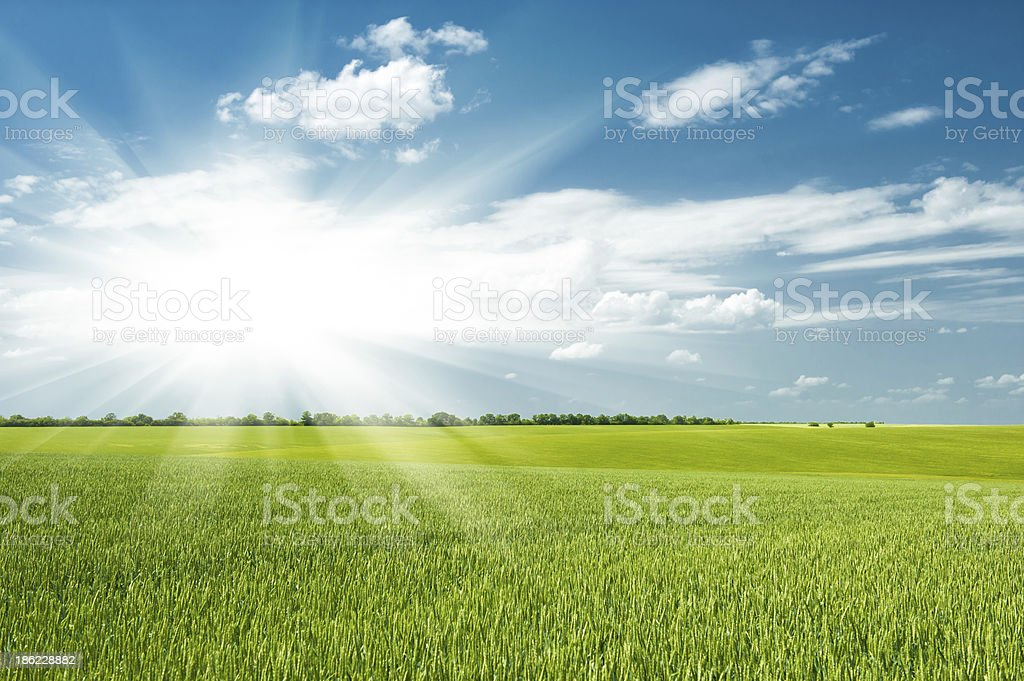 green field and clouds royalty-free stock photo
