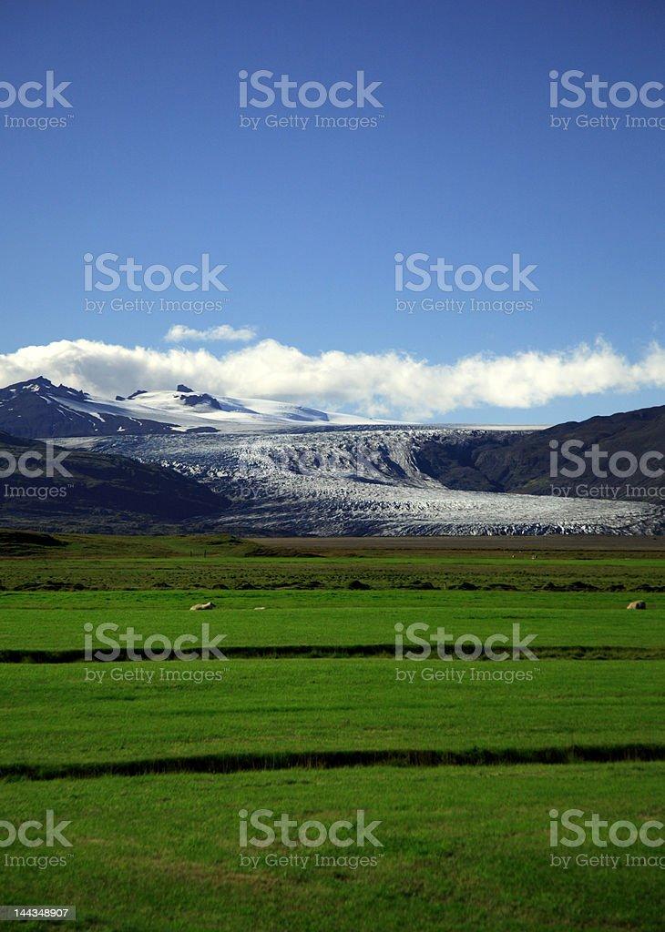 Green field and glacier stock photo