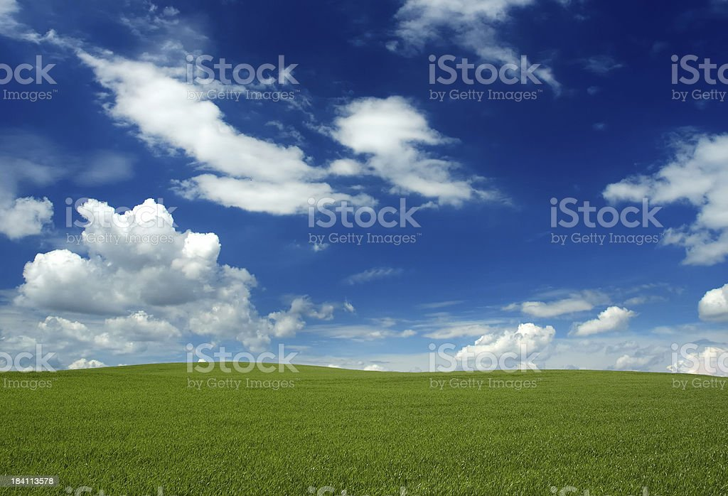 Green field and the blue sky royalty-free stock photo