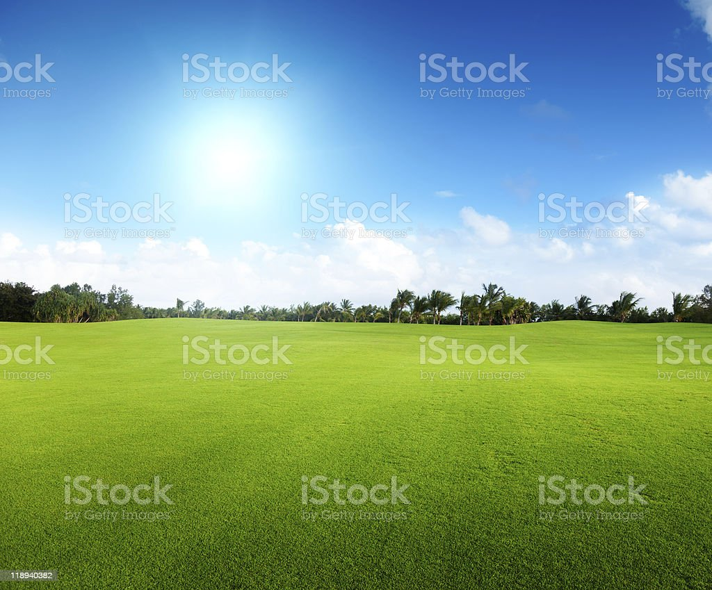 green field and trees royalty-free stock photo