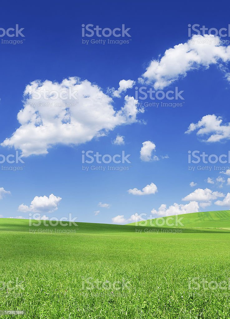Green field and white clouds in the blue sky royalty-free stock photo