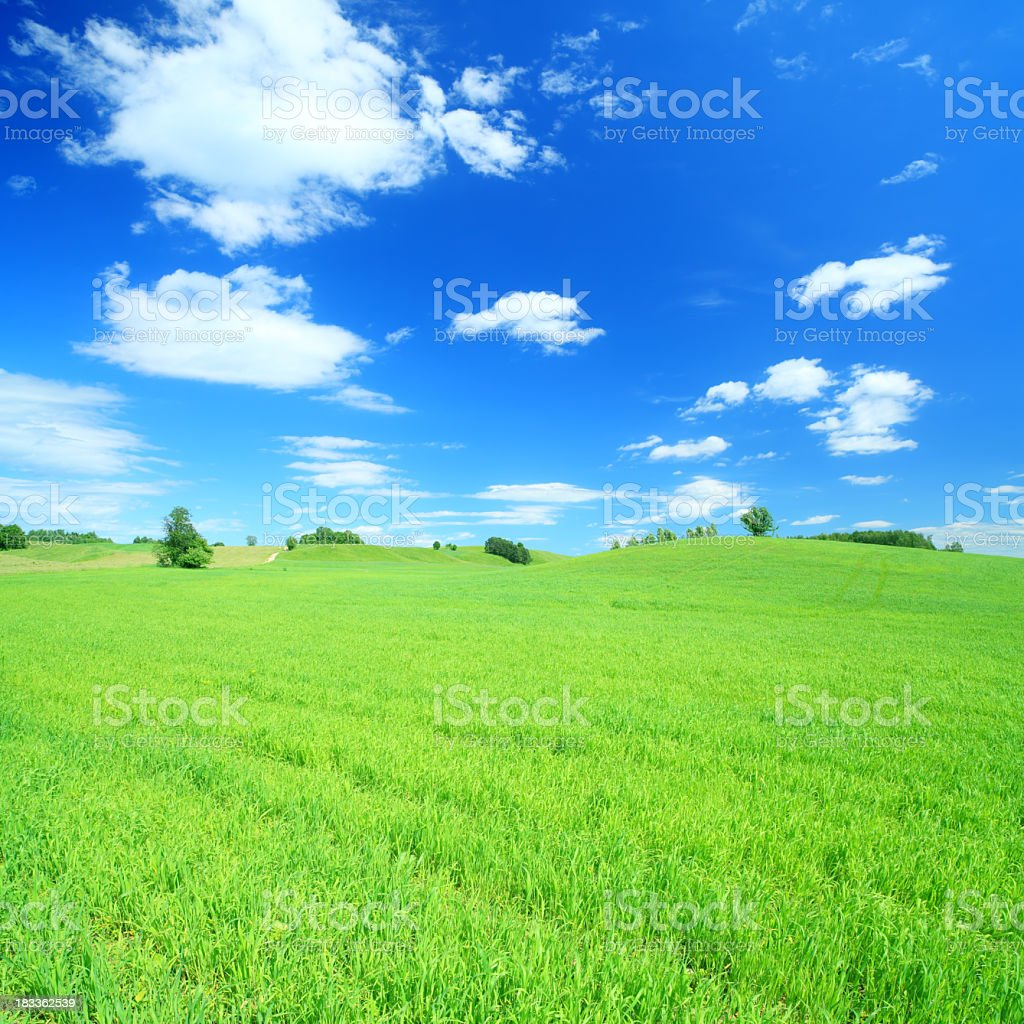 Green field and white clouds on blue sky royalty-free stock photo