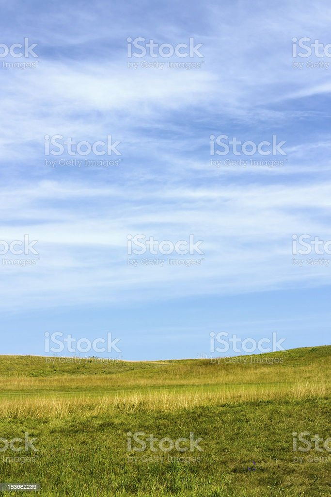 Green field background royalty-free stock photo