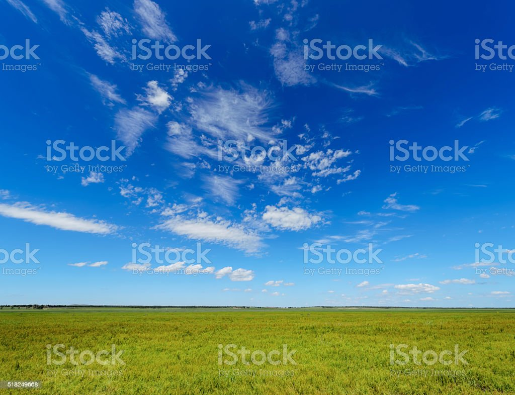 green field background stock photo