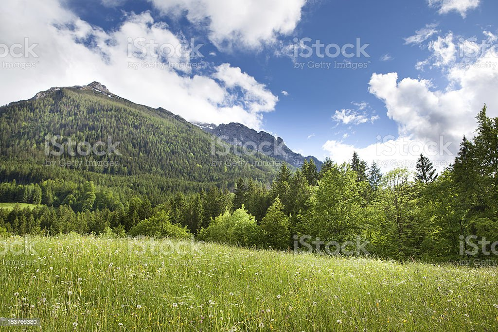 Green field in the mountains stock photo
