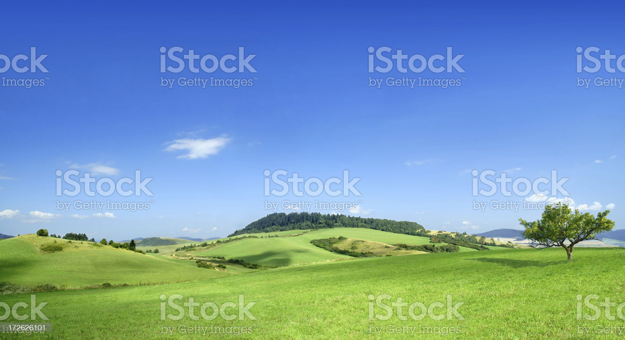 Green field landscape on a clear day royalty-free stock photo