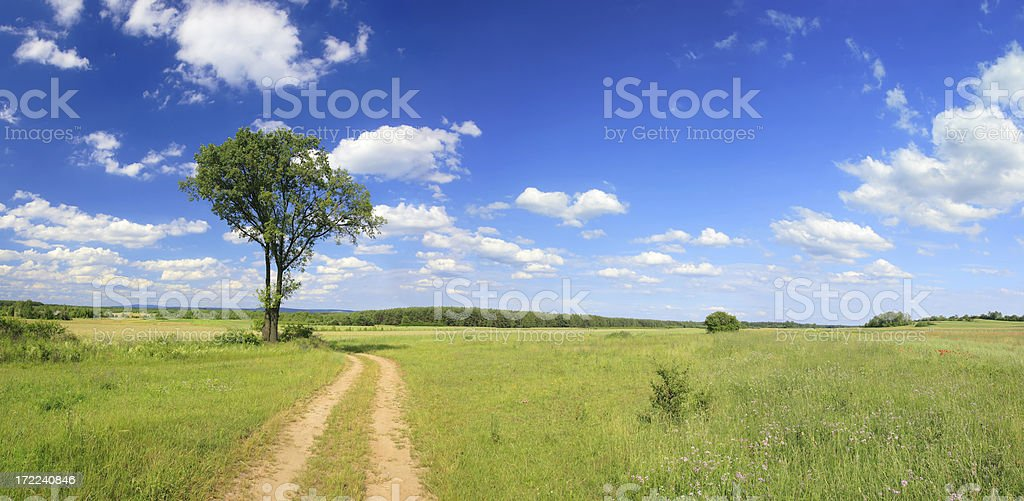 Green field Landscape - road royalty-free stock photo